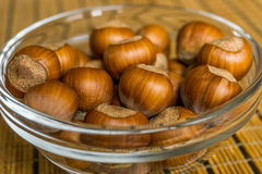 Nuts. Hazel (Corylus sp.) nuts, shells on a brown texture background Stock Images
