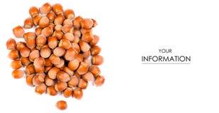 Nuts hazel pattern. On white background isolation stock photography