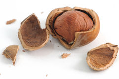 Nuts, Hazelnut Stock Image