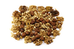 Nuts: hazelnut, walnut,  cedar Stock Photography