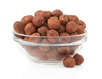 Nuts hazelnut on white Royalty Free Stock Images