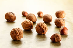 Nuts and hazelnuts Royalty Free Stock Image