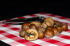 Nuts and hazelnuts in a red and white tablecloth Royalty Free Stock Photos
