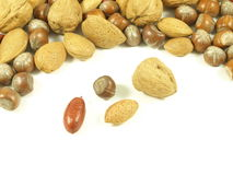 Nuts: hazelnuts,walnuts,almonds. Nuts - assortment: walnuts,hazelnuts,pecans,almonds on white isolated background stock photography