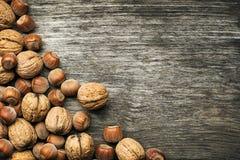 Nuts hazelnuts and walnuts Royalty Free Stock Photos