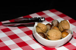 Nuts and hazelnuts in a white small dish Royalty Free Stock Photos