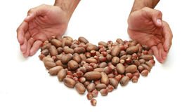 Nuts are heart-shaped and at the hands of men Stock Photo