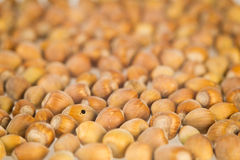 Nuts and a hole. A bunch of brown hazelnuts Stock Images