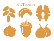 Nuts. Icon set.  fruit on white background Royalty Free Stock Image