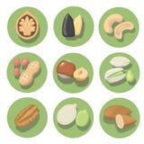 Nuts icon set. peanut, cashew, pistachio and hazelnut Stock Photos