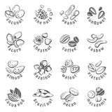 Nuts icons set Stock Photo