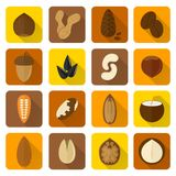 Nuts Icons Set Stock Image