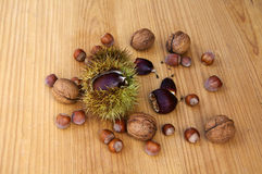 Nuts II. Mixture of various nuts in a wood background Stock Photo