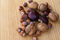 Nuts III. Mixture of various nuts in a wood background Stock Photos