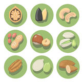 Nuts Ikonensatz Erdnuss, Acajoubaum, Pistazie und Haselnuss Stockfotos