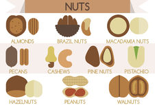 Nuts  Illustrator Royalty Free Stock Photo