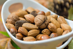 Nuts In A Bowl Royalty Free Stock Image