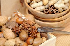 Free Nuts In Shells Royalty Free Stock Photography - 35031587