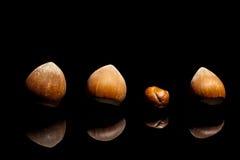 Among nuts innovative Stock Photo