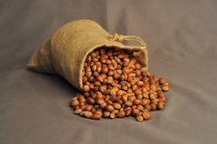 Nuts, insulated bag on a dark background Royalty Free Stock Photo