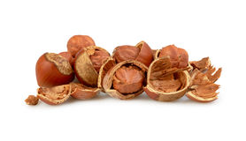 Nuts isolated Stock Photo