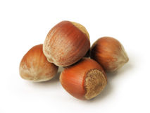 Nuts isolated Stock Photos