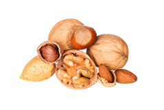 Nuts isolated on white. Hazelnuts, almonds, walnuts. Nuts isolated on white. Hazelnuts, almonds and walnuts Royalty Free Stock Images