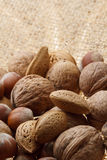 Nuts. On the jute background royalty free stock image