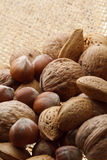Nuts Stock Image