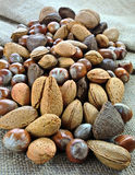 Nuts on jute surface. A bunch of mixed nuts: Brazil nuts, hazelnuts, almonds and walnuts on a jute surface stock photography