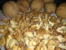 Nuts in kernels and grains. On a white saucer there are nuts. A healthy diet is rich in vitamins. Greek and walnut stock photo
