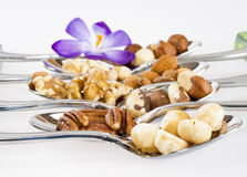 Different nut varieties on spoons with a flower Royalty Free Stock Photo