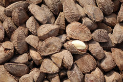 Nuts in market stock photo