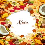 Nuts Mix Background Stock Photo