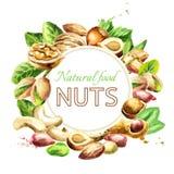 Nuts mix. Natural organic food. Watercolor  illustration Stock Photo
