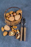 Nuts mix in shell - walnuts, hazel and almonds with nut chaker o Royalty Free Stock Photography