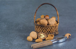 Nuts mix in shell - walnuts, hazel and almonds with nut chaker o Stock Photography