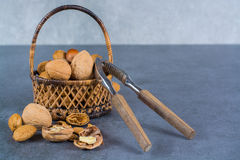 Nuts mix in shell - walnuts, hazel and almonds with nut chaker o Royalty Free Stock Images