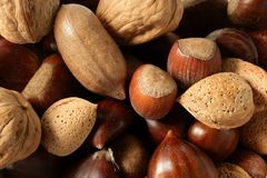 Nuts mix, walnuts, pecan hazelnut almond, chestnut Royalty Free Stock Photo