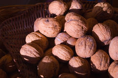 Nuts in nest Stock Image