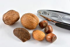 Nuts and a nut cracker. Mixed nuts and a nut cracker Stock Photos