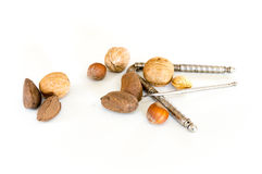 Nuts and Nut Cracker Stock Images