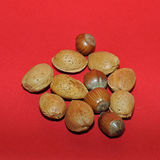 Nuts and nutcracker. Fresh nuts on red background royalty free stock photos