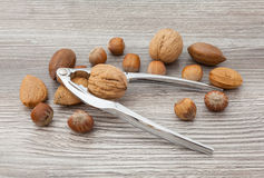 Nuts and nutcracker. Mixed nuts and nutcracker on the table Stock Photo