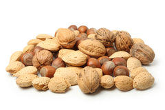 Nuts in nutshells Royalty Free Stock Images