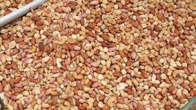 Nuts on a oriental bazaar in Istanbul stock video footage