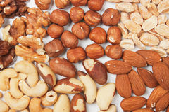 Nuts over white background Stock Image