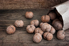 Nuts in paper bags Royalty Free Stock Photo