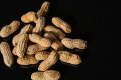 Nuts. Peanut in peel royalty free stock photo