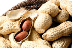 Nuts. Peanuts in shell. Peanuts in shell arranged on fabric Stock Images